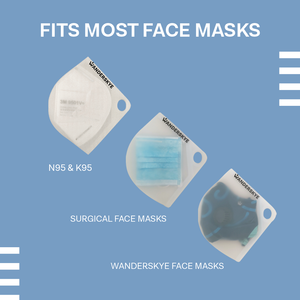 Face Mask Case - Green