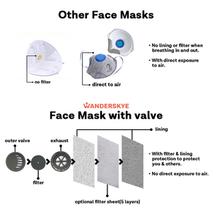 Face Mask with Filter Pocket - Where to Next (2pcs)
