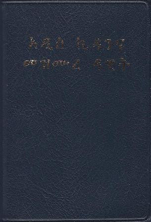 Amharic - New Testament & Psalms