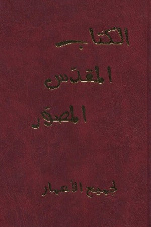 Arabic - Picture Bible