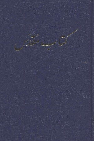 Farsi - Bible (leather)