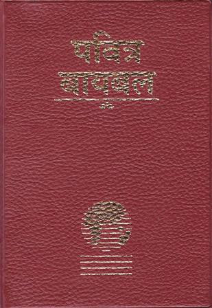 Marathi - Bible (Contemporary)