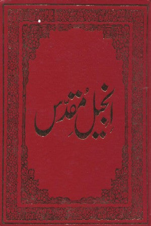 Urdu - New Testament , Large Print