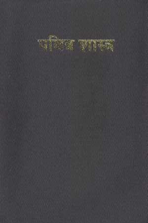 Marathi - Bible (Formal)