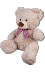 Ribbon Teddy Bear