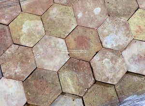 Pastel Color Palette French Reclaimed Terra Cotta Tile Hexagons