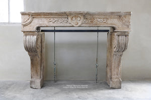 Antique 18th Century Renaissance French Bourgogne Limestone Fireplace Mantel