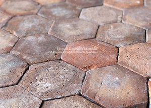 Moody & Rich Aubergine and Red Lot French Reclaimed Hexagon Terra Cotta Tile