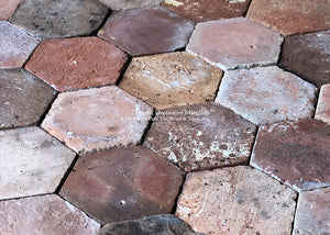 Stunning Painter's Palette of French Reclaimed Hexagon Terra Cotta Tile
