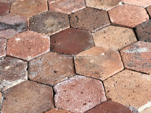 Historic Color Palette of French Reclaimed Hexagon Terra Cotta Tile