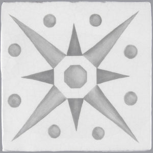 Gardens in the Cloister 16th Century French Encaustic Decorative Tile: Star