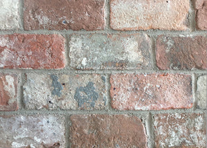 Reclaimed VENEER Belgian Red Bricks for Floors, Hearths, Fireplace Surrounds and Focal Point Walls