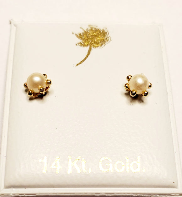 14 KT Six prong pearl Screw Back Earrings