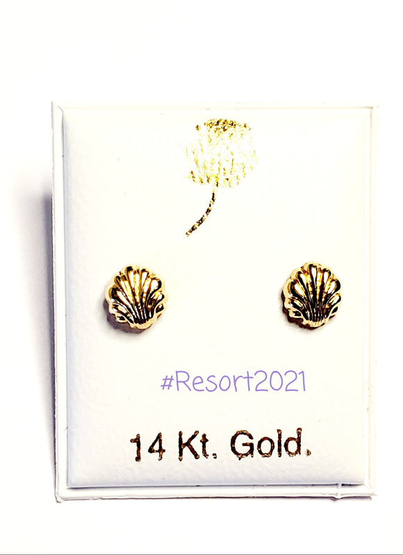 14 KT Sea Shell Screw Back Earrings