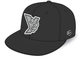 Cap, Black with Steel Y