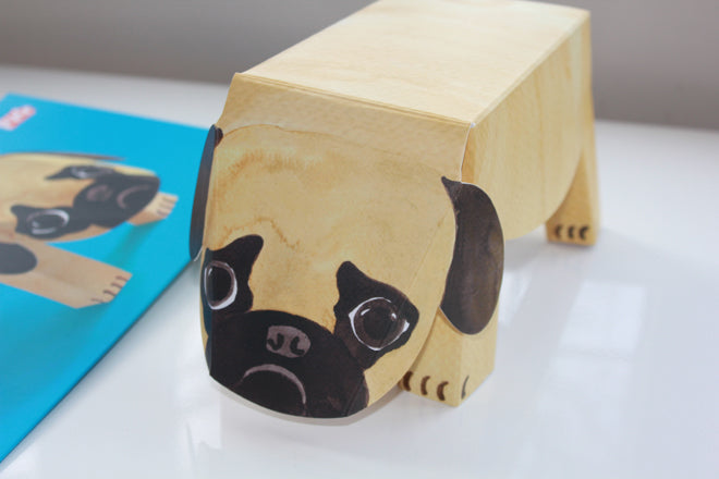 Cardboard pop up pets, published by Bobby Rabbit