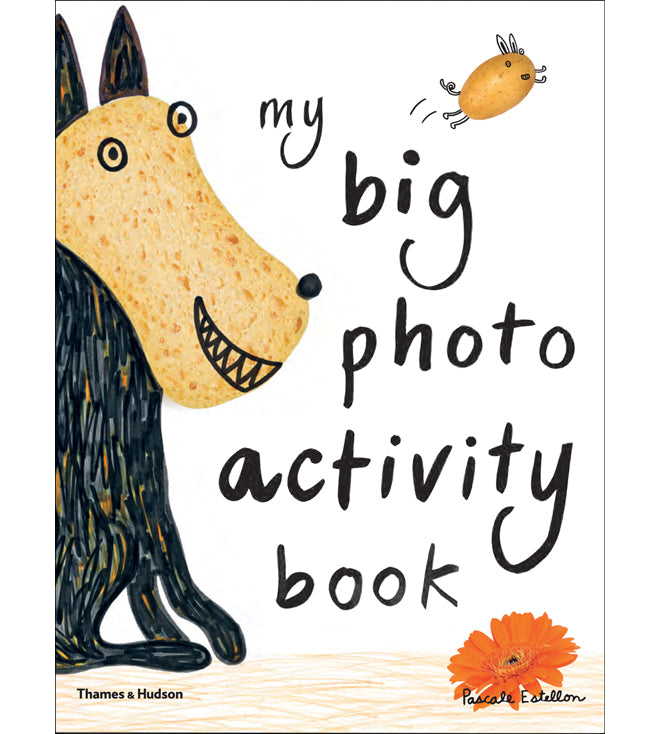 'My Big Photo Activity Book' children's activity book by Pascale Estellon, published by Thames & Hudson, review by Bobby Rabbit