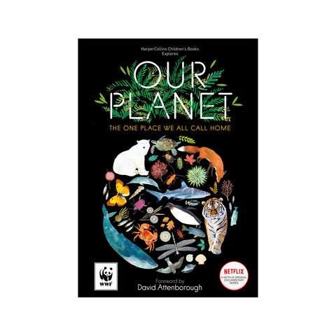 Our Planet Book by Matt Whyman, available at Bobby Rabbit.