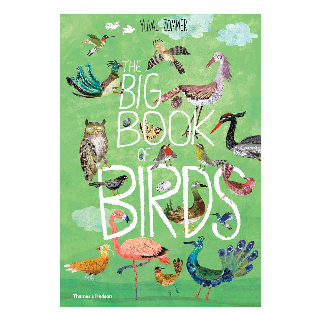 The Big Book of Birds by Yuval Zommer, available at Bobby Rabbit.