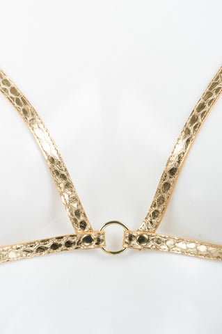 Golden Python Harness