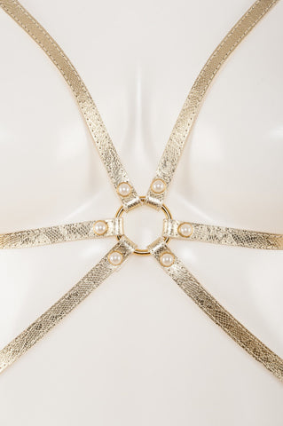 Gold Lace Harness