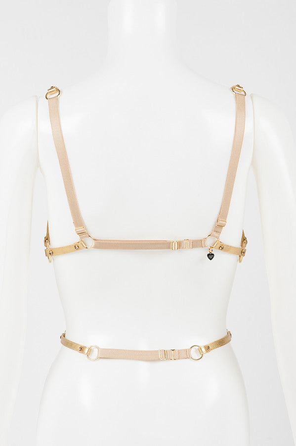 Champagne Cage Harness - Fräulein Kink  - 5