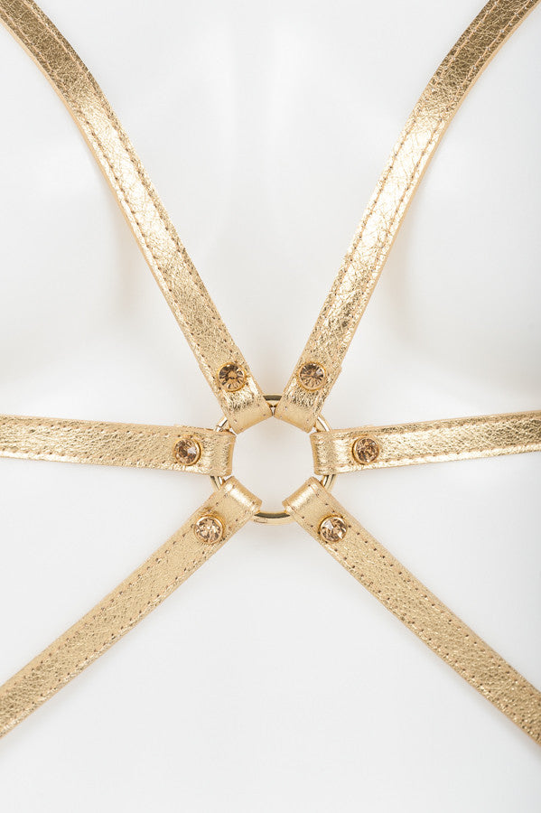 Champagne Cage Harness - Fräulein Kink  - 3