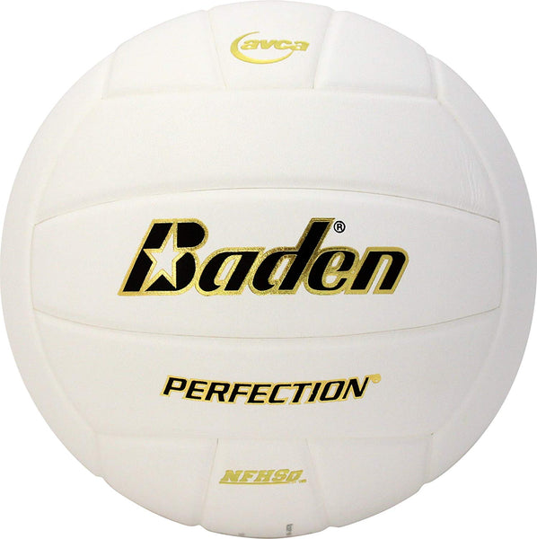 Baden Perfection Leather Volleyball