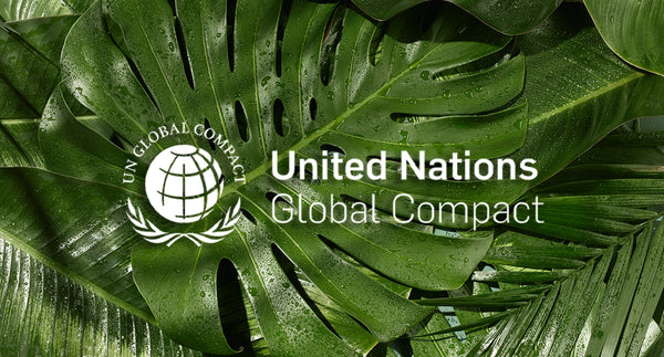 We Joined the United Nations Global Compact