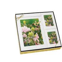 Theme Hummingbird - Stationary Box Set - IUTM110 BOXSET