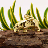 Gold Hippo Charm - Perfectcharm - 3