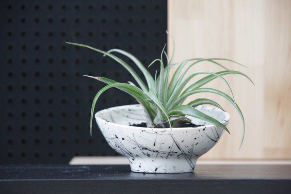 AYA- Ceramic planter in black lines pattern