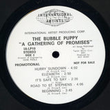 Bubble Puppy / A Gathering Of Promises