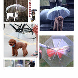 Cute Fashion Transparent Dog Umbrella leash for small dogs