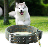 L/XL Size Army Green Canvas Dog Collar, Double Row Buckle Design