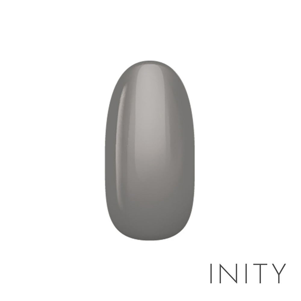 INITY high-end color NE-06M Charcoal Gray 3g