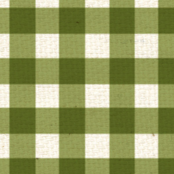 **IWGG8  Inch Worm Green Gingham 8 1/2 x 11