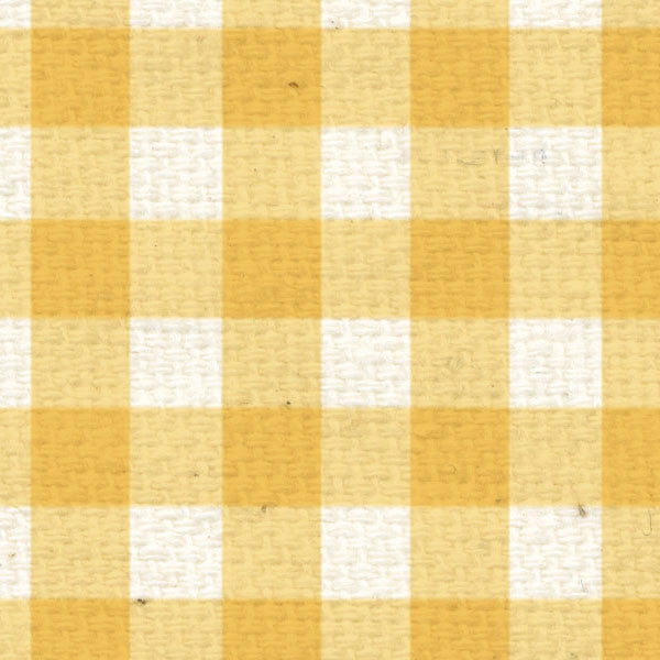 *DLG8  Daylily Gingham Paper  8 1/2 x 11