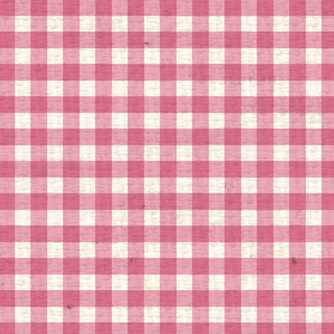 *PCMG8  Pink Cosmos Mini Gingham 8 1/2 x 11