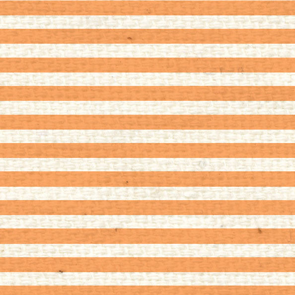 **OPMS8  Orange Poppy Mini Stripes 8 1/2 x 11