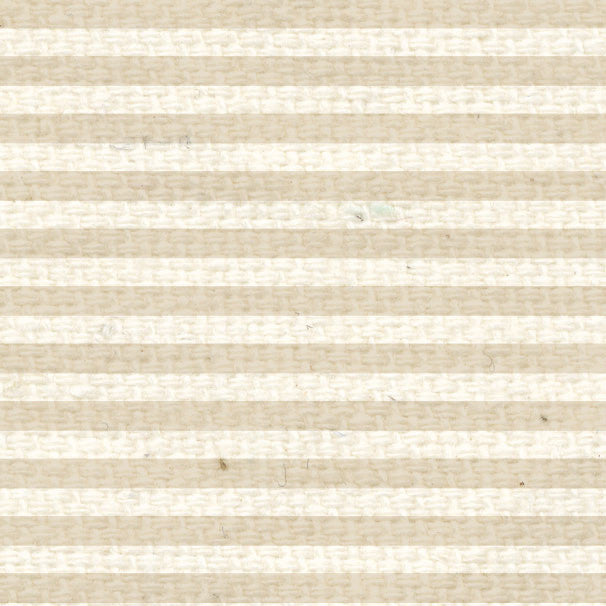 **BBMS8  Baby's Breath Mini Stripes  8 1/2 x 11