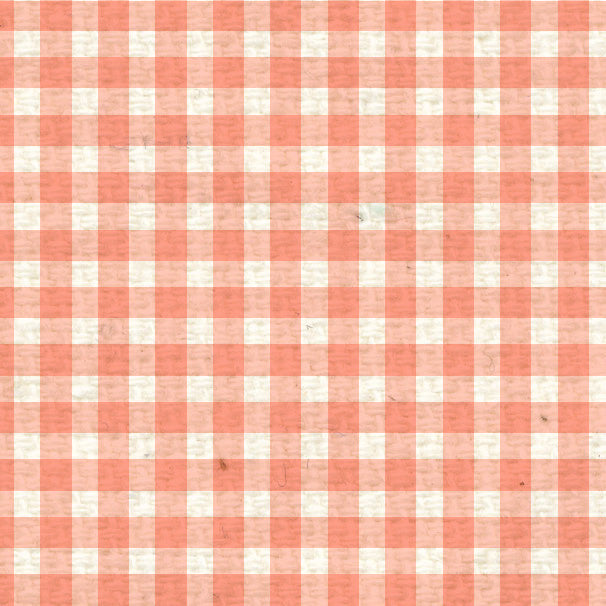 *PNCMG8  Peaches 'n Cream Mini Gingham Paper  8 1/2 x 11