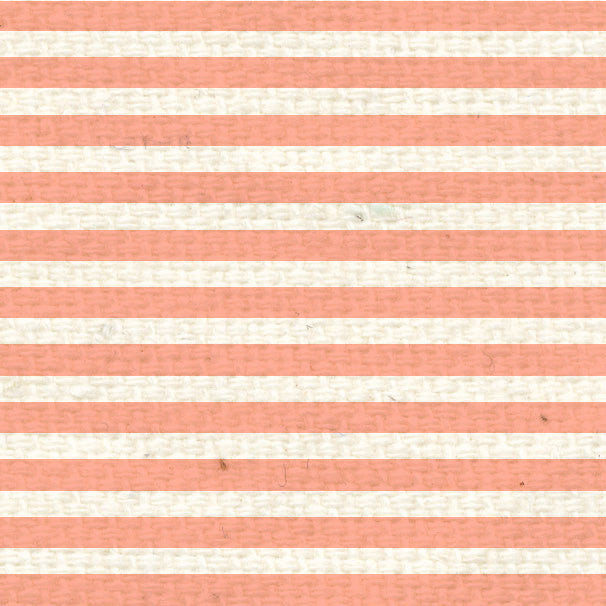 *PNCMS8  Peaches 'n Cream Mini Stripes  8 1/2 x 11