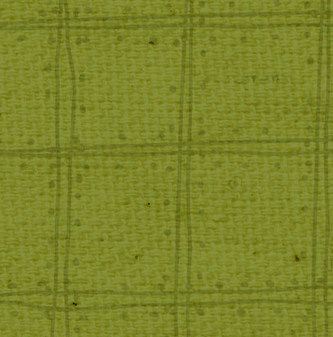 ***IWGDP8  Inch Worm Green Doodle Plaid Paper  8 1/2 x 11