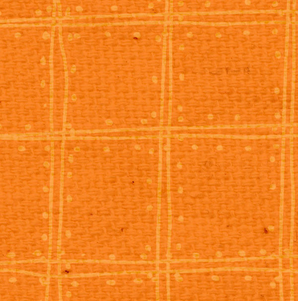 *OPDP8  Orange Poppy Doodle Plaid Paper  8 1/2