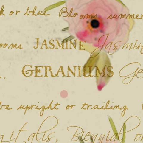 **WHTSRG8 - Tea Stained Rose Garden Paper  8 1/2 x 11