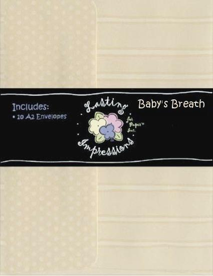 A2 Envelope - Baby's Breath