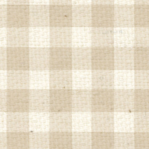 **BBG12  Baby's Breath Gingham Paper  12 x 12
