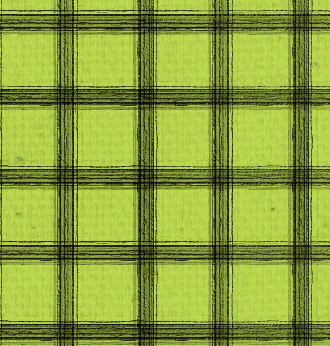 *SH - Green Canvas w/Black Plaid 8 1/2 x 11