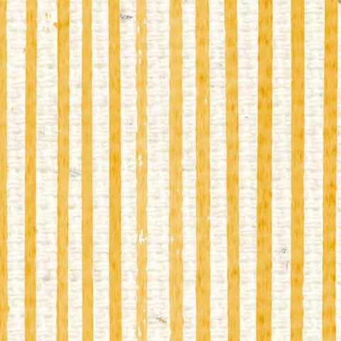 *HSDLAS - Daylily Antique Stripes Paper  8 1/2 x 11